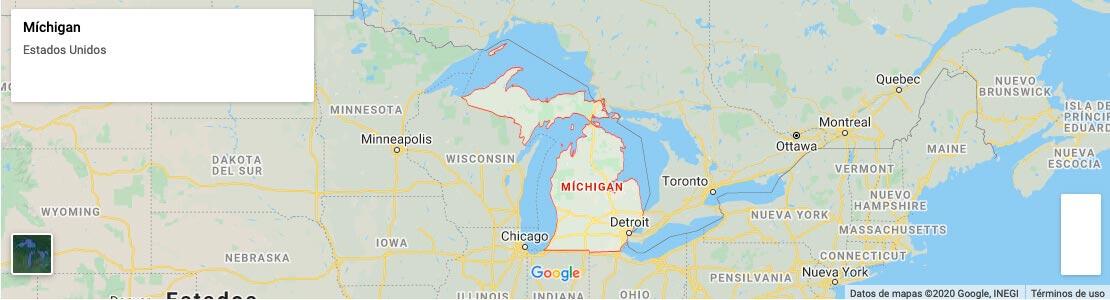 Porta Potty Dogs in Detroit, MI